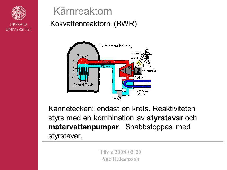 Kärnreaktorn Kokvattenreaktorn (BWR)