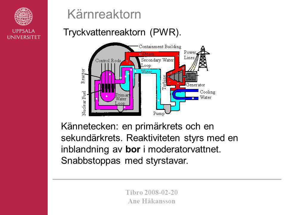 Kärnreaktorn Tryckvattenreaktorn (PWR).