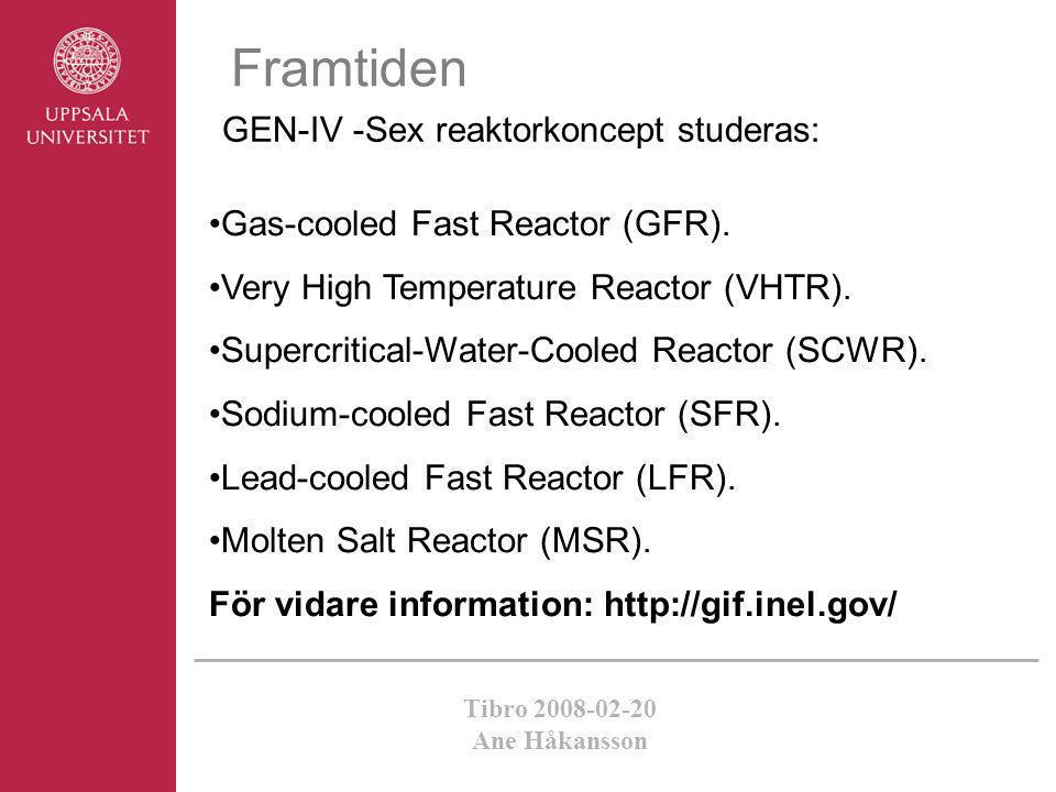 Framtiden GEN-IV -Sex reaktorkoncept studeras: