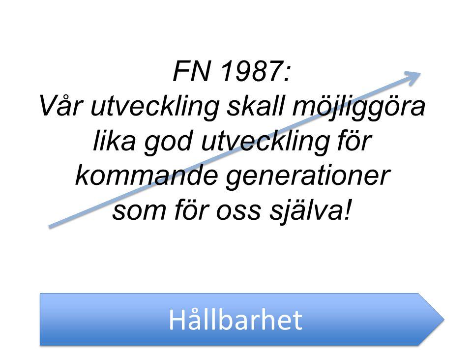 Hållbarhet FN 1987: Vår utveckling skall möjliggöra