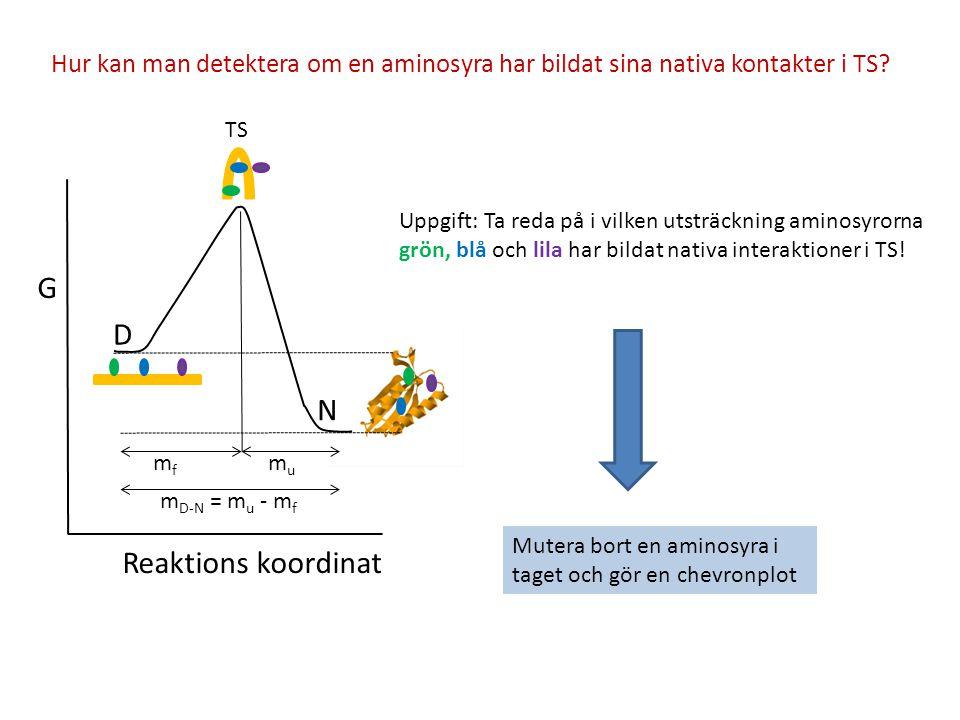 G D N Reaktions koordinat