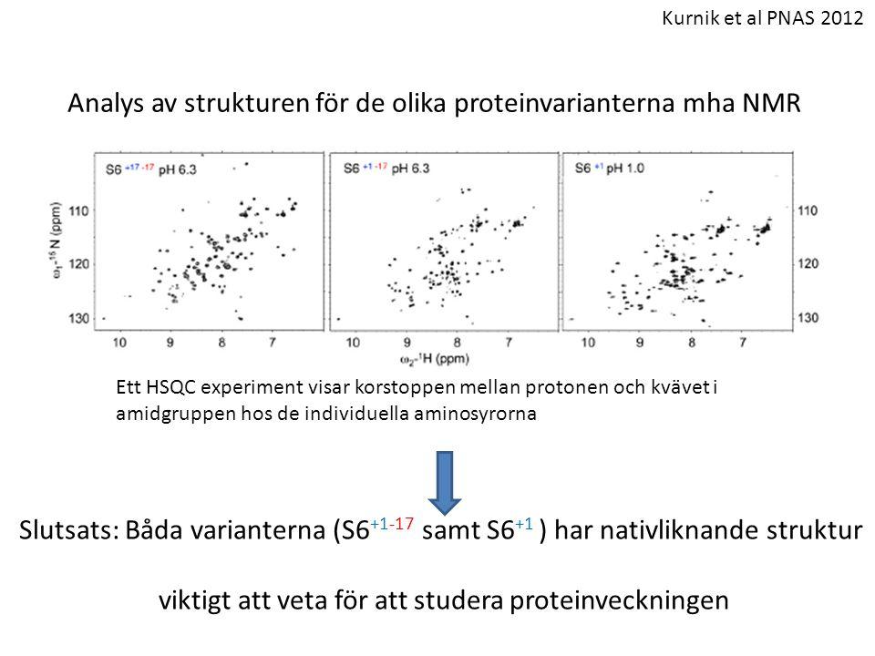 viktigt att veta för att studera proteinveckningen