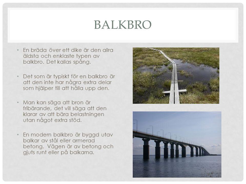 BALKBRO En bräda över ett dike är den allra äldsta och enklaste typen av balkbro. Det kallas spång.