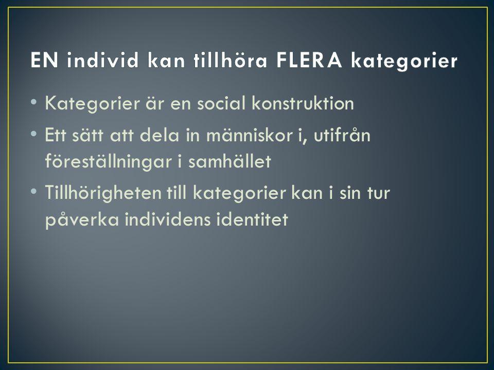 EN individ kan tillhöra FLERA kategorier