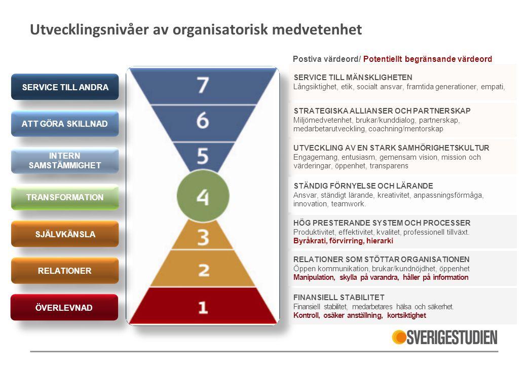 Utvecklingsnivåer av organisatorisk medvetenhet