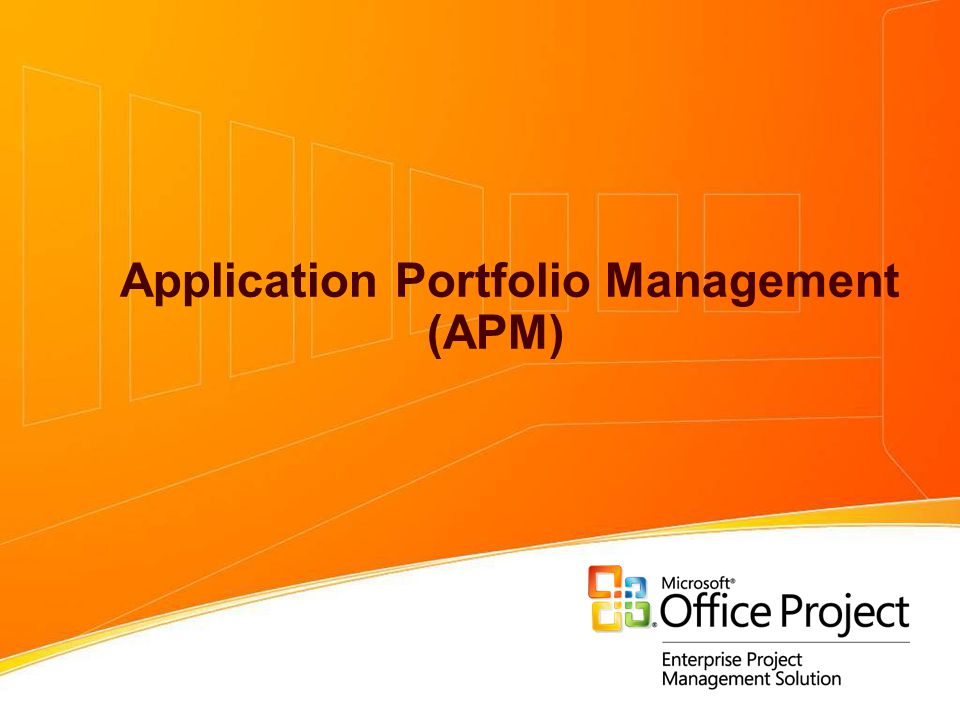 Application Portfolio Management (APM)