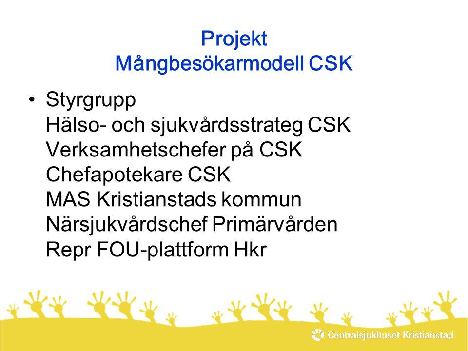 Projekt Mångbesökarmodell CSK