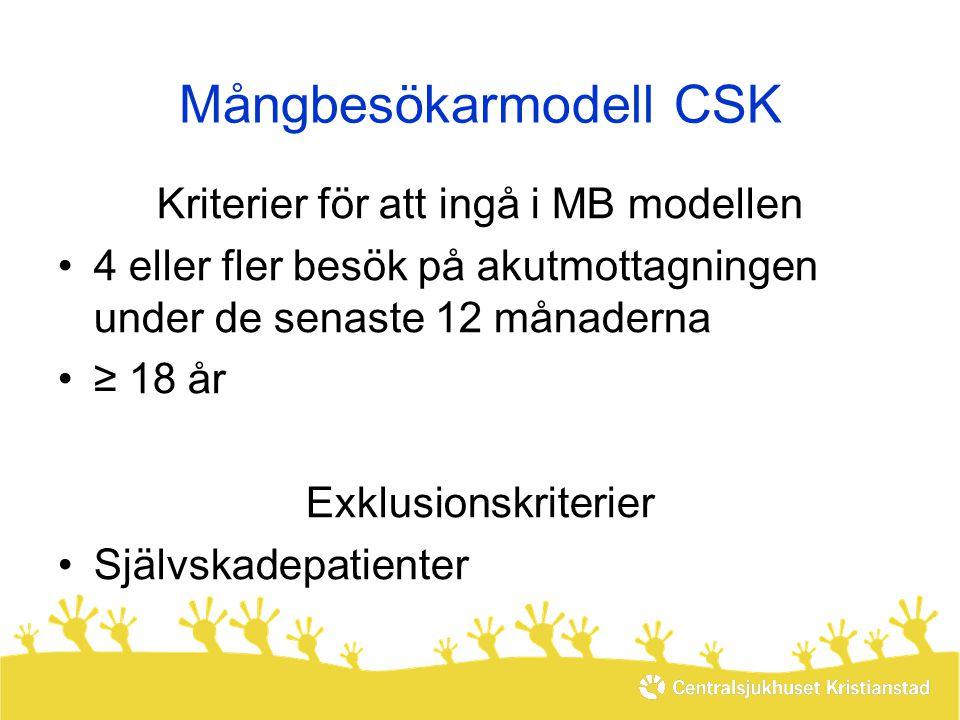 Mångbesökarmodell CSK