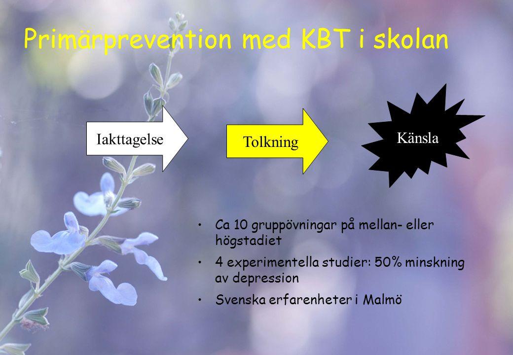 Primärprevention med KBT i skolan