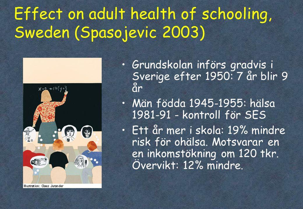 Effect on adult health of schooling, Sweden (Spasojevic 2003)