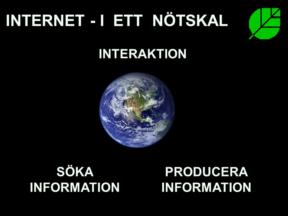 INTERNET - I ETT NÖTSKAL