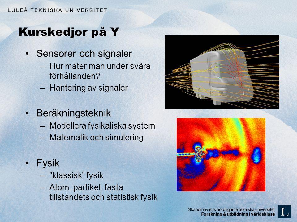 Kurskedjor på Y Sensorer och signaler Beräkningsteknik Fysik
