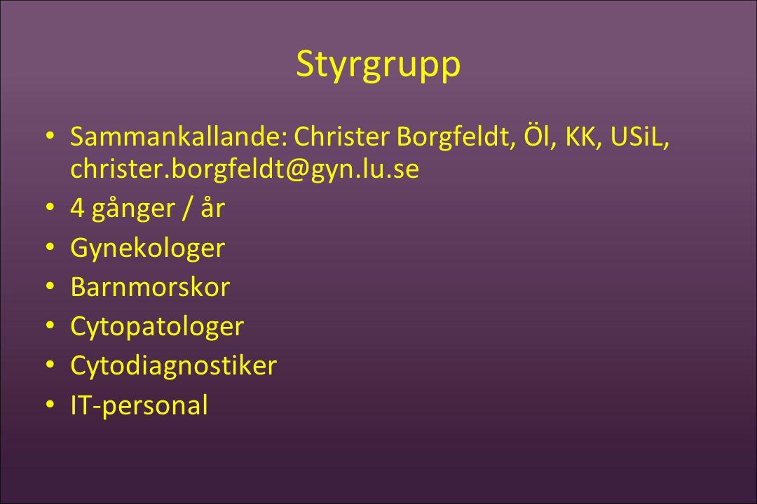 Styrgrupp Sammankallande: Christer Borgfeldt, Öl, KK, USiL, christer.borgfeldt@gyn.lu.se. 4 gånger / år.