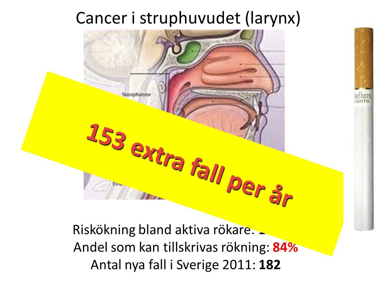 153 extra per år 153 extra fall per år Cancer i struphuvudet (larynx)