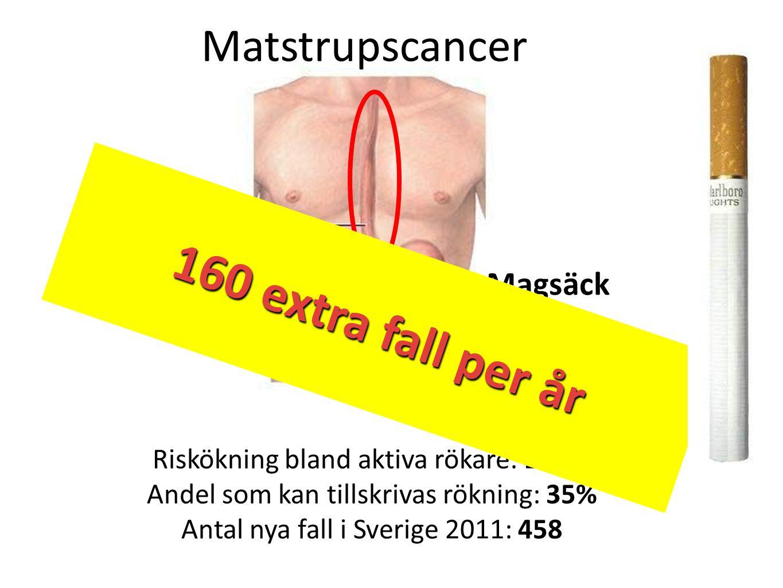 160 extra fall per år 160 extra fall per år Matstrupscancer Matstrupe