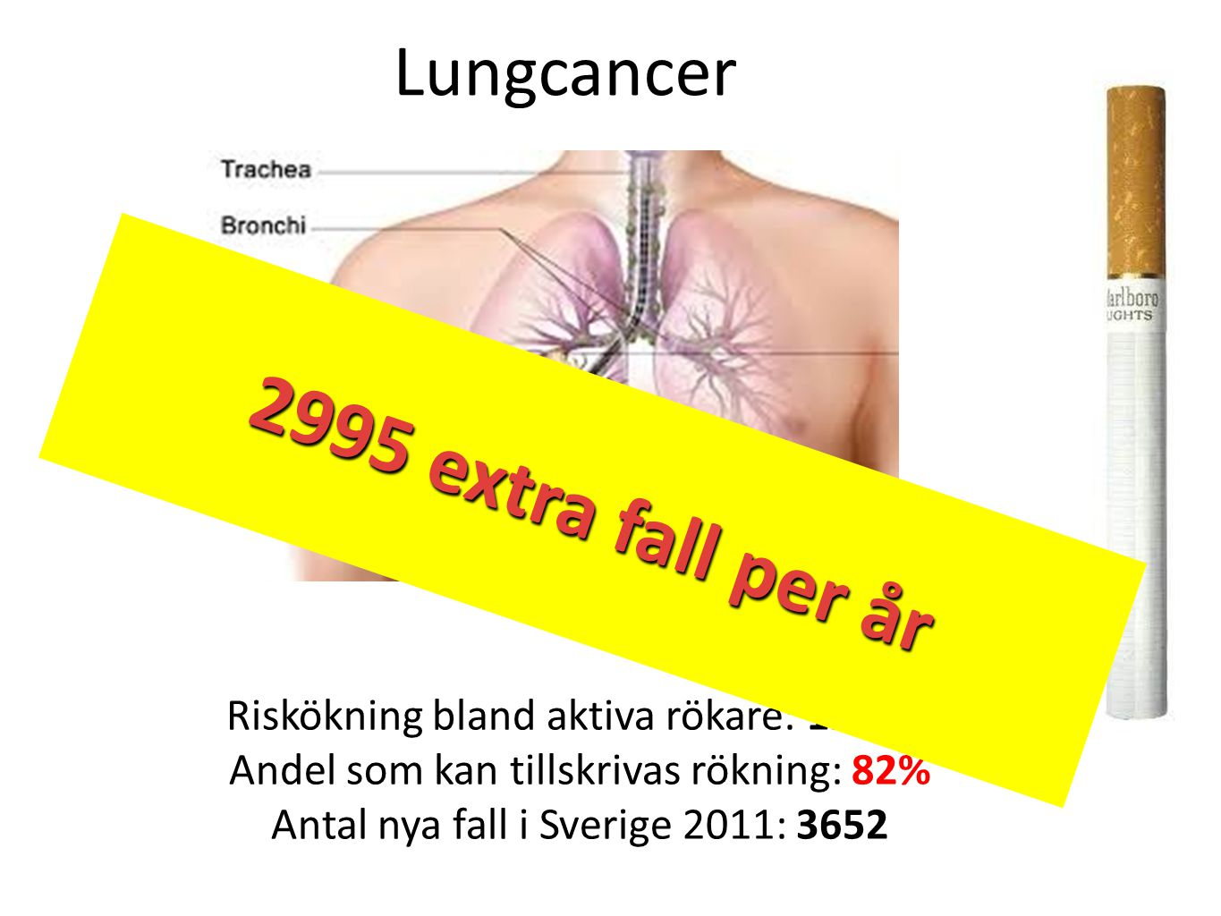 2995 extra cases per year 2995 extra fall per år Lungcancer