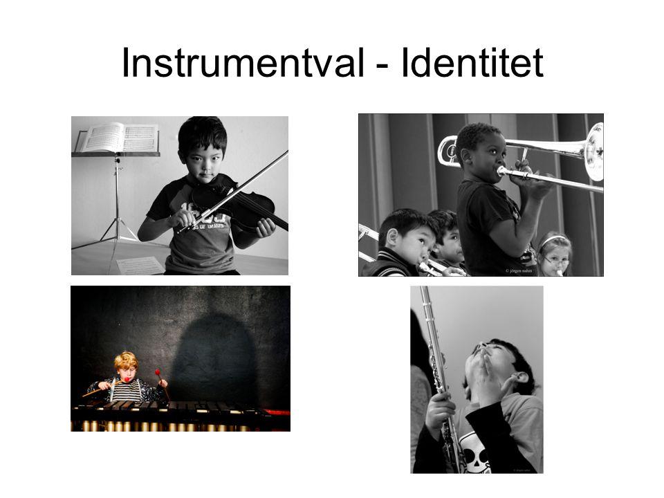 Instrumentval - Identitet