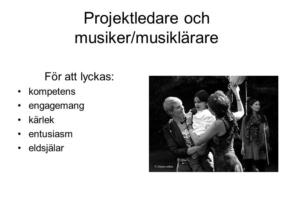 Projektledare och musiker/musiklärare