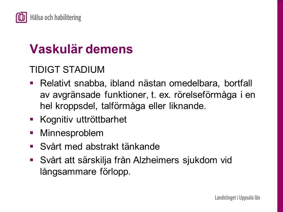 Vaskulär demens TIDIGT STADIUM