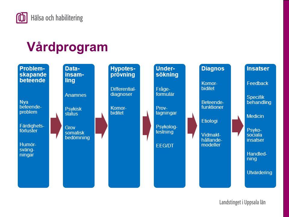 Vårdprogram Problem-skapande beteende Data-insam-ling Hypotes-prövning