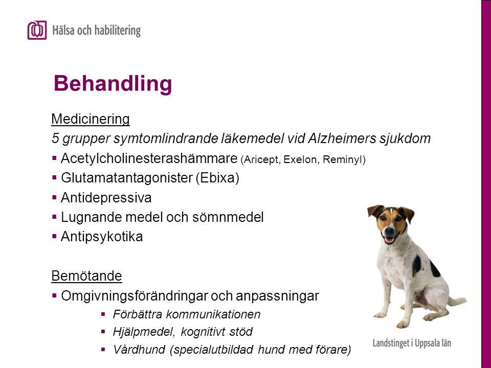 Behandling Medicinering