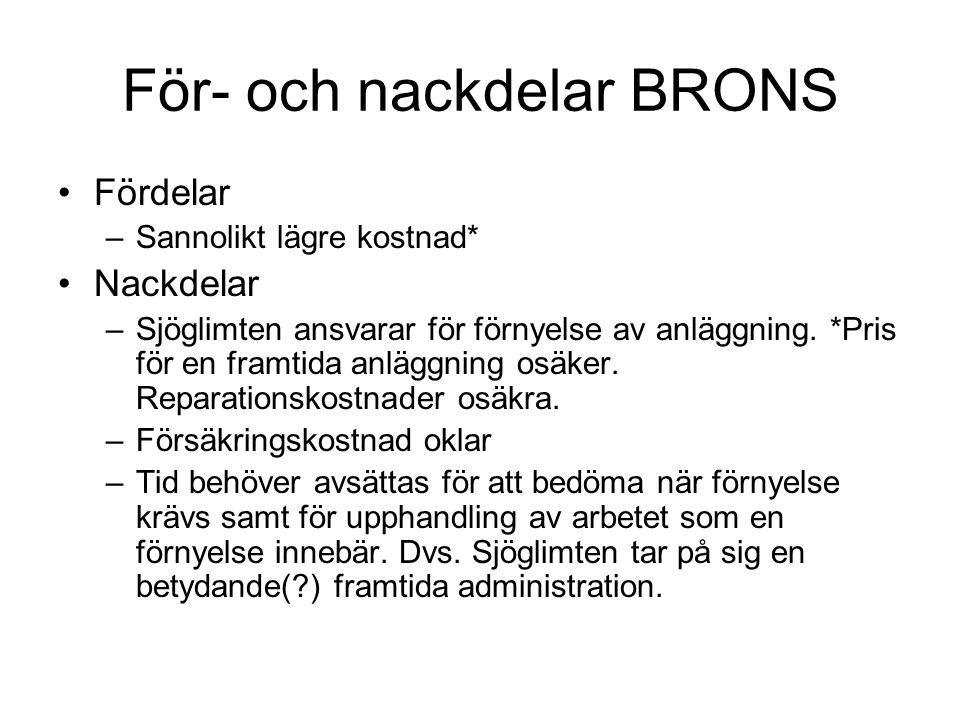 För- och nackdelar BRONS