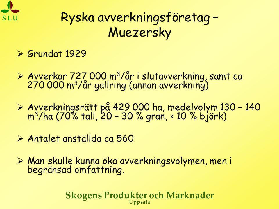 Ryska avverkningsföretag – Muezersky