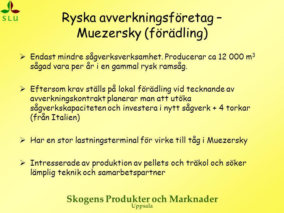 Ryska avverkningsföretag – Muezersky (förädling)