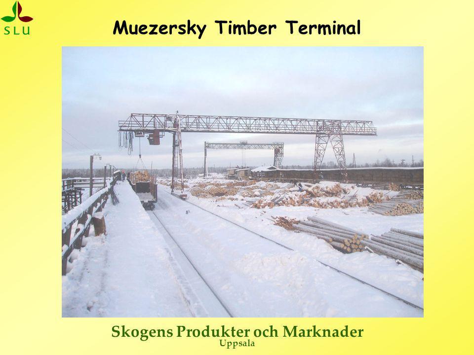 Muezersky Timber Terminal