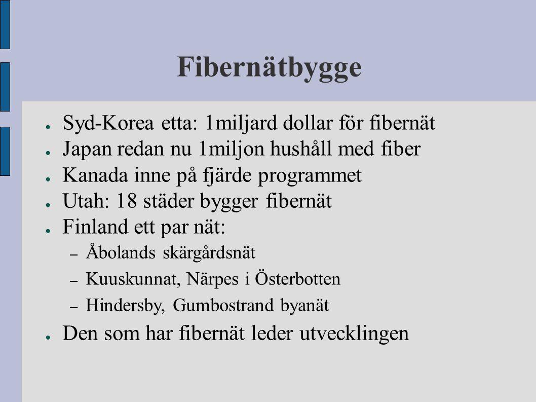 Fibernätbygge Syd-Korea etta: 1miljard dollar för fibernät