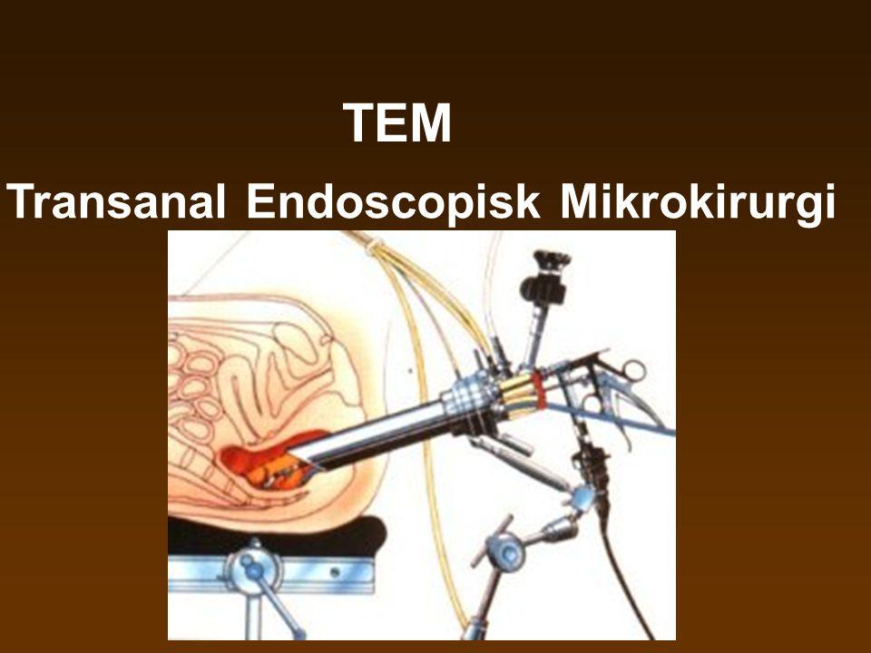 Transanal Endoscopisk Mikrokirurgi