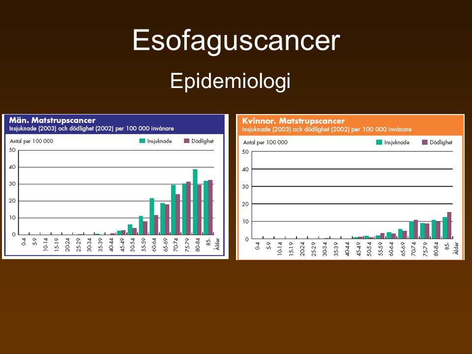 Esofaguscancer Epidemiologi