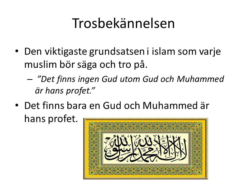 Trosbekännelsen Den viktigaste grundsatsen i islam som varje muslim bör säga och tro på. Det finns ingen Gud utom Gud och Muhammed är hans profet.