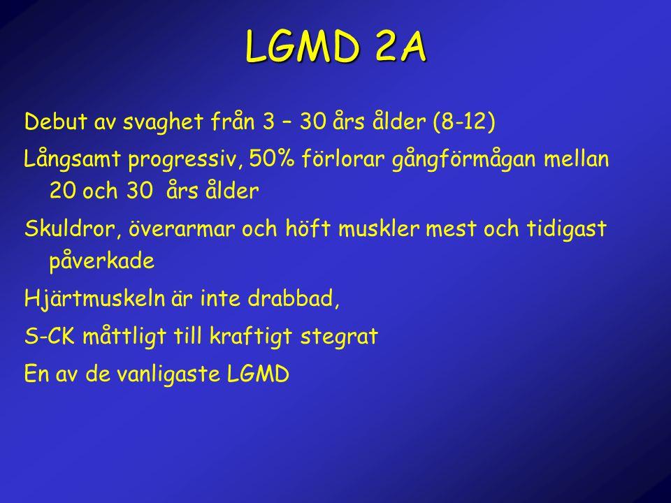 LGMD 2A Debut av svaghet från 3 – 30 års ålder (8-12)