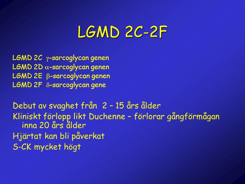 LGMD 2C-2F Debut av svaghet från 2 – 15 års ålder