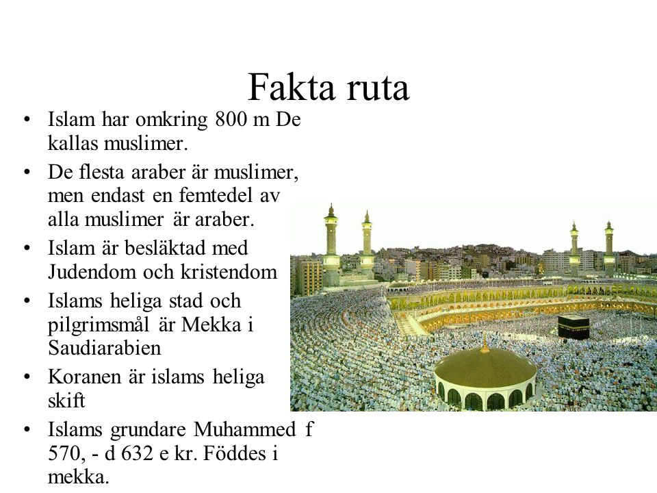 Fakta ruta Islam har omkring 800 m De kallas muslimer.