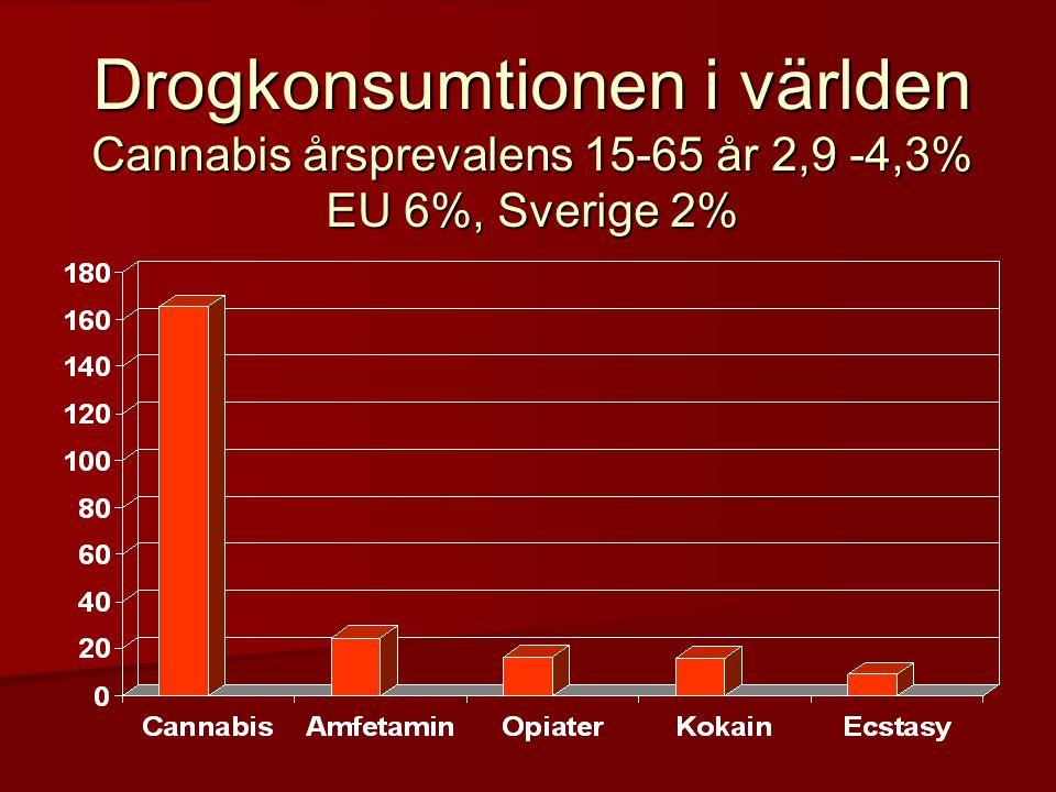 Drogkonsumtionen i världen Cannabis årsprevalens 15-65 år 2,9 -4,3% EU 6%, Sverige 2%