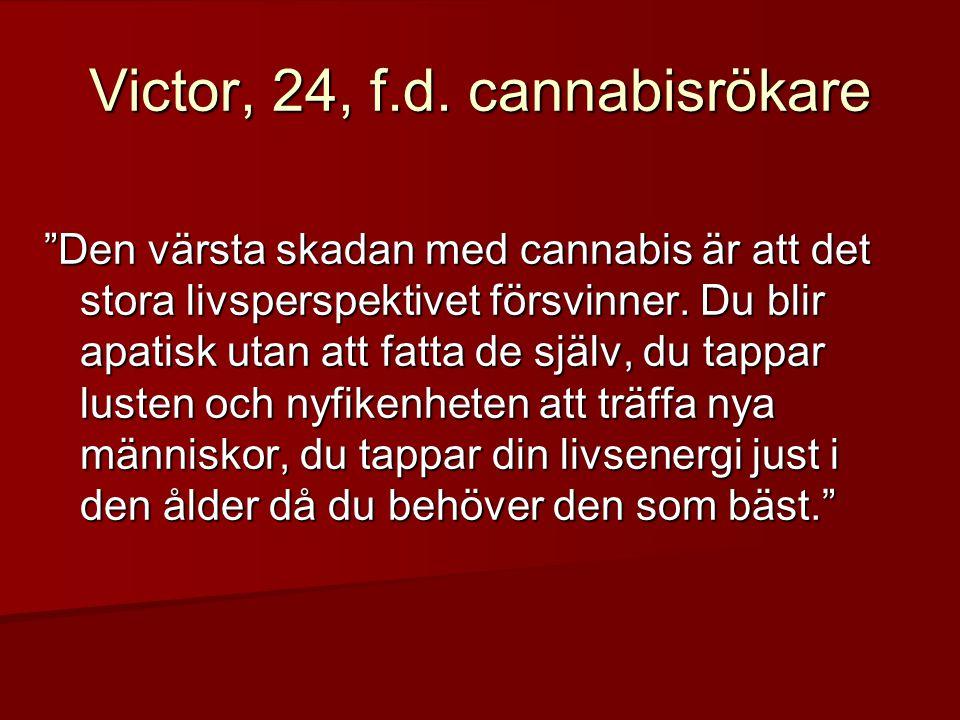 Victor, 24, f.d. cannabisrökare