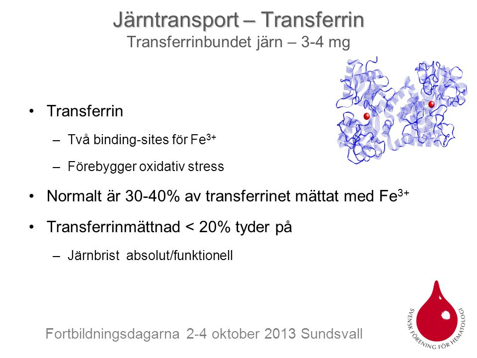 Järntransport – Transferrin Transferrinbundet järn – 3-4 mg