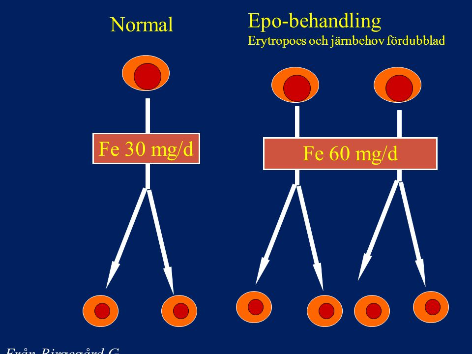 Epo-behandling Normal Fe 30 mg/d Fe 60 mg/d Från Birgegård G