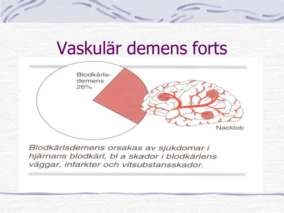 Vaskulär demens forts