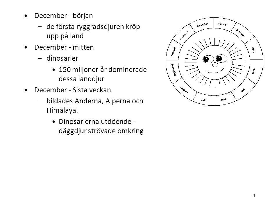 December - början de första ryggradsdjuren kröp upp på land. December - mitten. dinosarier. 150 miljoner år dominerade dessa landdjur.