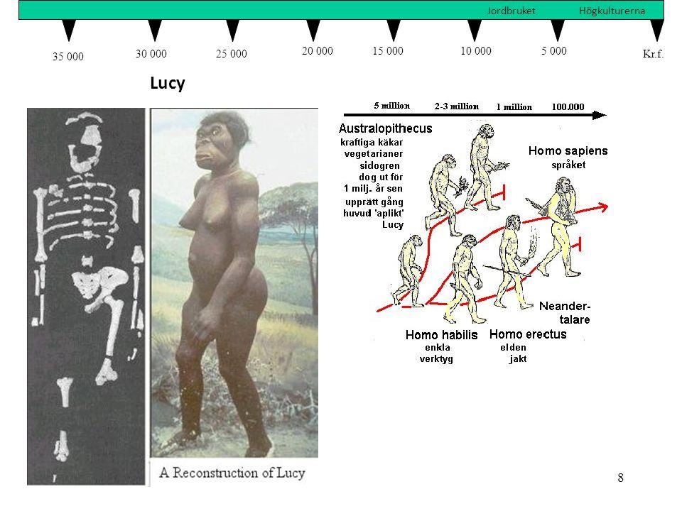 35 000 30 000 25 000 20 000 15 000 10 000 5 000 Kr.f. Jordbruket Högkulturerna Lucy