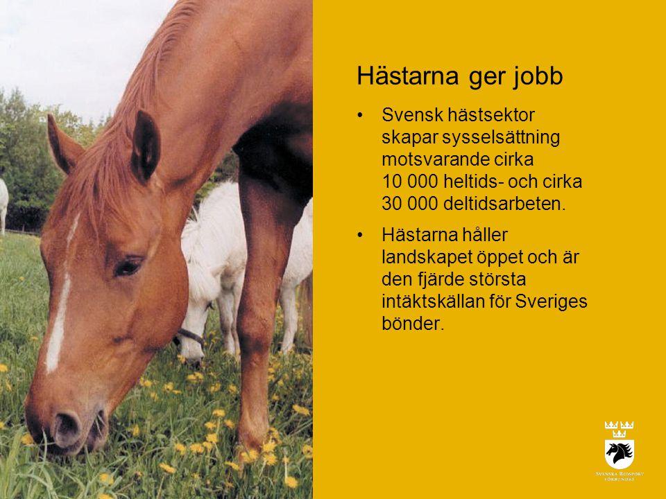Hästarna ger jobb Svensk hästsektor skapar sysselsättning motsvarande cirka 10 000 heltids- och cirka 30 000 deltidsarbeten.