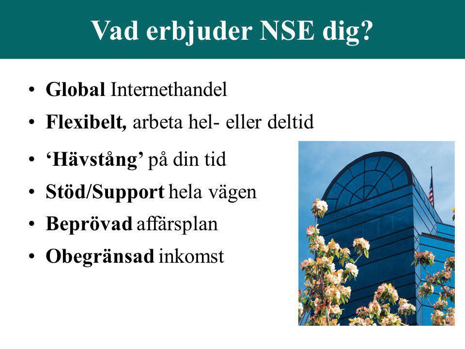 Vad erbjuder NSE dig Global Internethandel