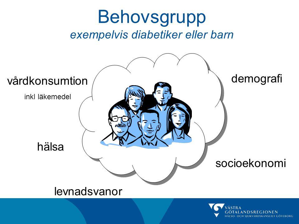 Behovsgrupp exempelvis diabetiker eller barn