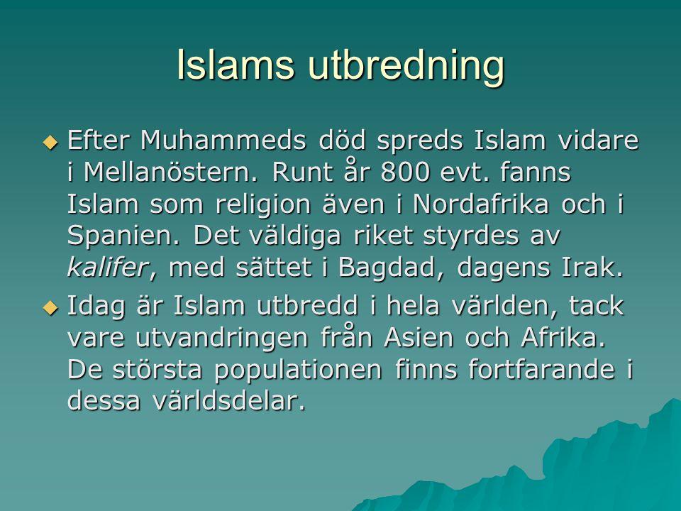 Islams utbredning