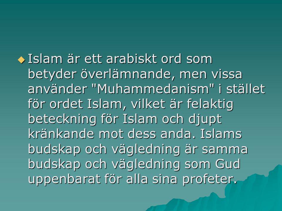 Islam är ett arabiskt ord som betyder överlämnande, men vissa använder Muhammedanism i stället för ordet Islam, vilket är felaktig beteckning för Islam och djupt kränkande mot dess anda.