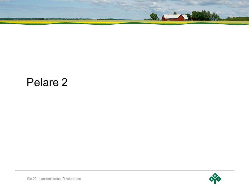 Pelare 2
