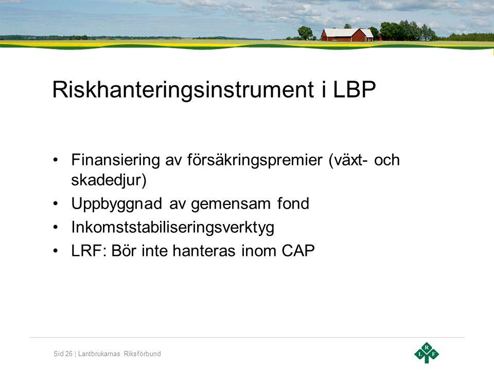 Riskhanteringsinstrument i LBP